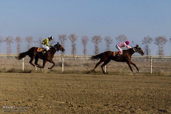 هفته قهرمانی کورس اسبدوانی زمستانه گنبد برگزار گردید