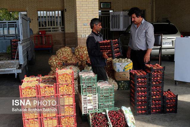 میدان میوه و تره بار الغدیر اهواز تعطیل نمی شود ، دلالان حذف می شوند