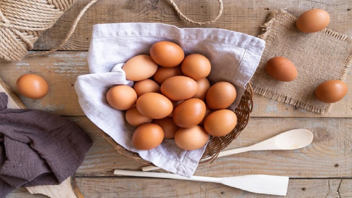 سرگردانی مرغداران از آشفتگی بازار نهاده های دامی، زیان 4 هزار تومانی در فروش هر کیلو تخم مرغ